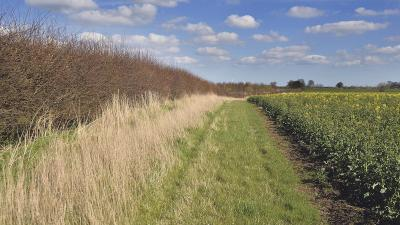 countryside stewardship applications